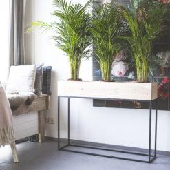 Fiorella plantenbak 120cm